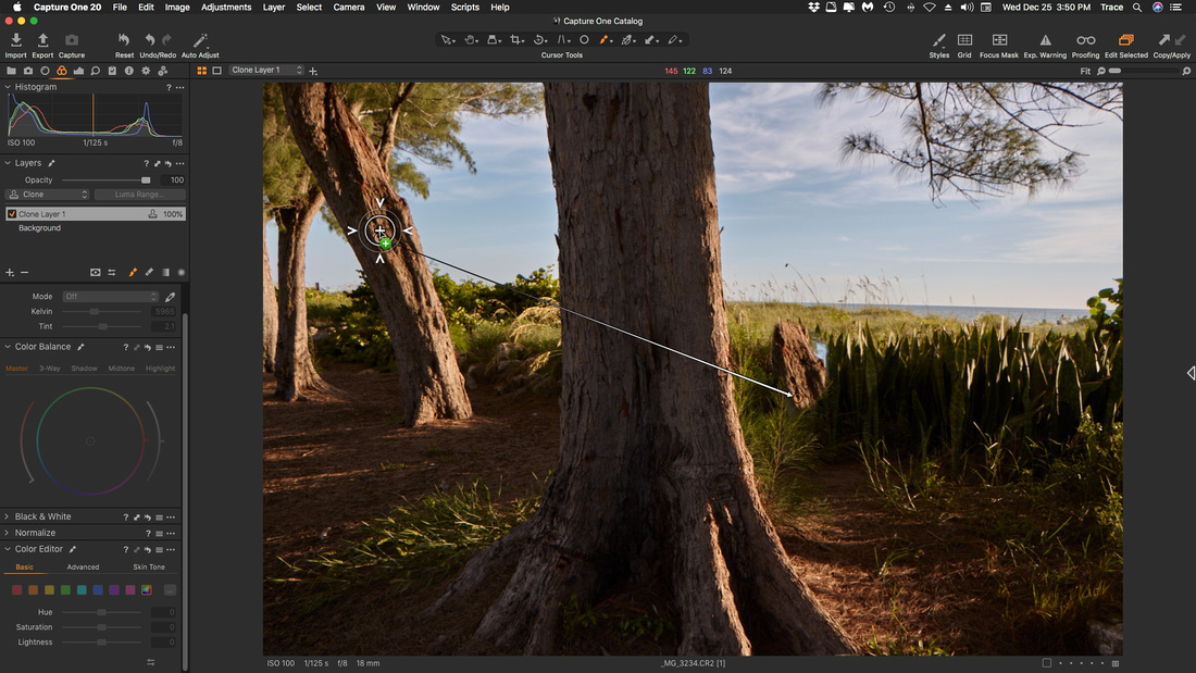 Capture One 20-Clone Layer w Mask