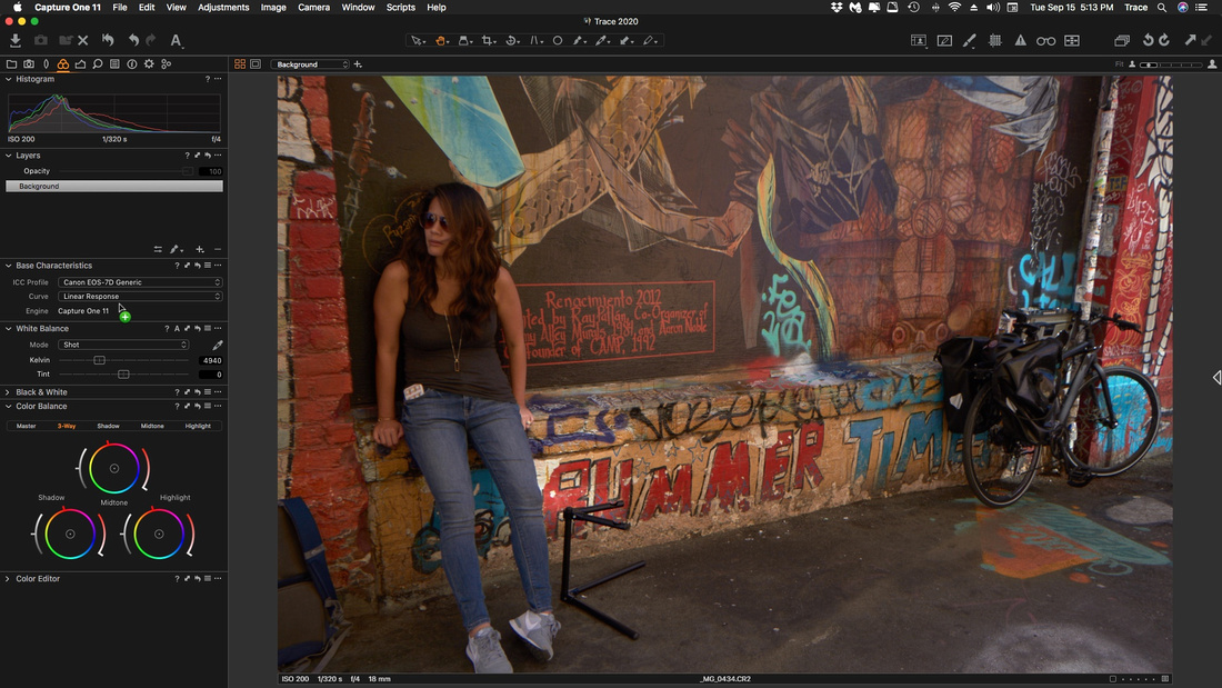 Capture One  Pro 11 RAW-Linear Curve