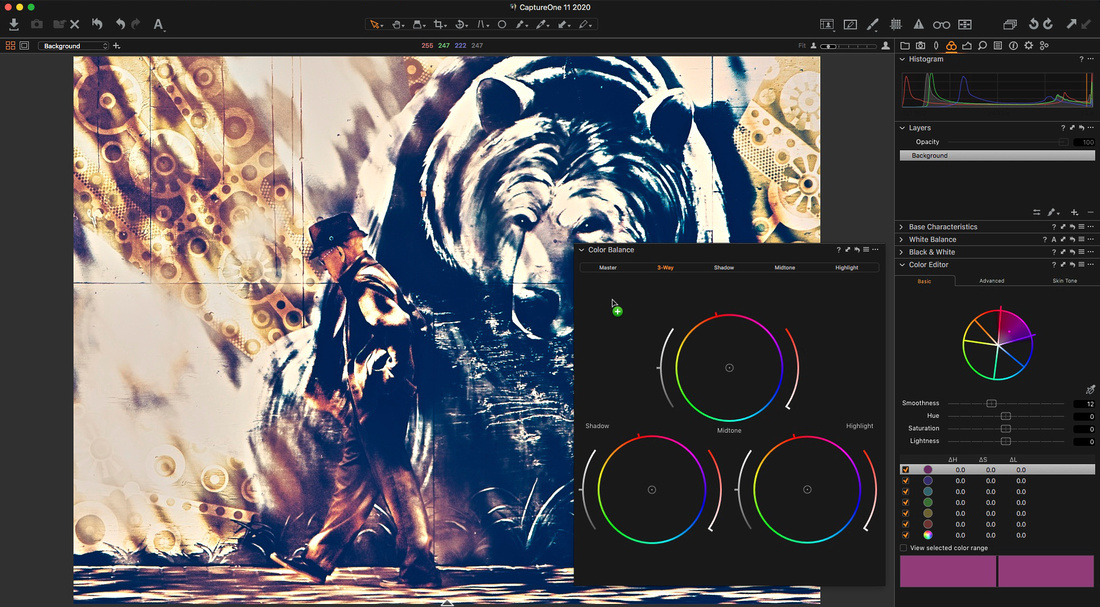 Capture  One 11 Tool Expand