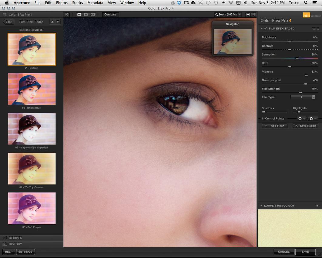 Nik Color Efex Pro 4 Faded Film Default