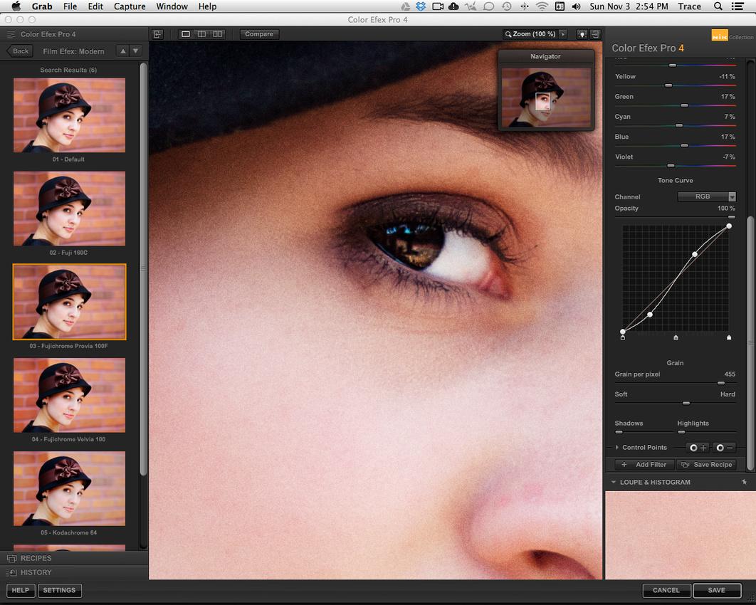 Nik Color Efex Pro 4 Modern Film Fuji Provia 100